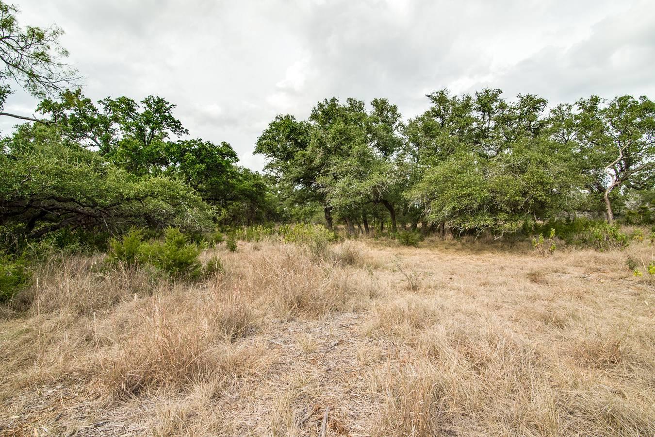 27723   Bogen Rd , New Braunfels, TX - USA (photo 3)