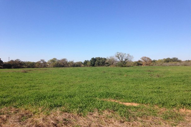 13454  Adkins Saint Hedwig Rd , St. Hedwig, TX - USA (photo 1)