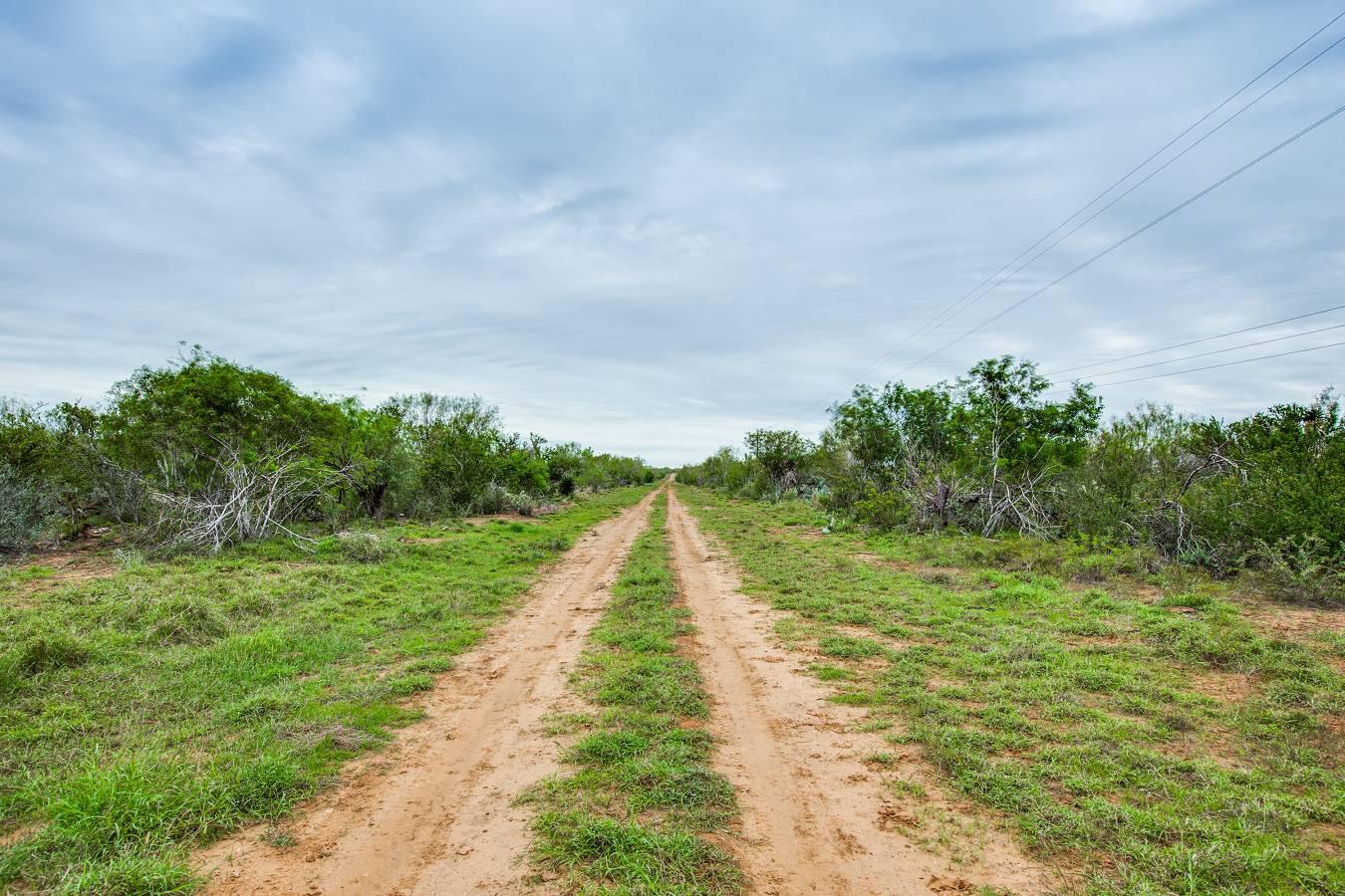10120  Cr 4670 , Dilley, TX - USA (photo 4)