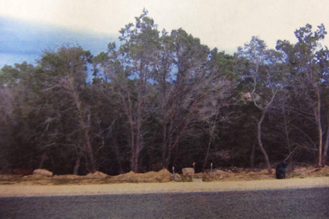 1802  Mountain Springs , Canyon Lake, TX - USA (photo 1)