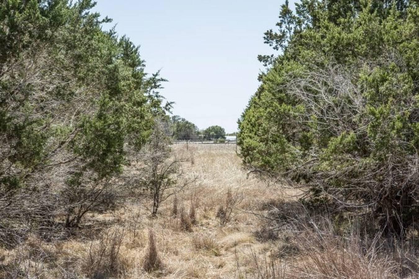 00   Fm 1283 , Pipe Creek, TX - USA (photo 3)