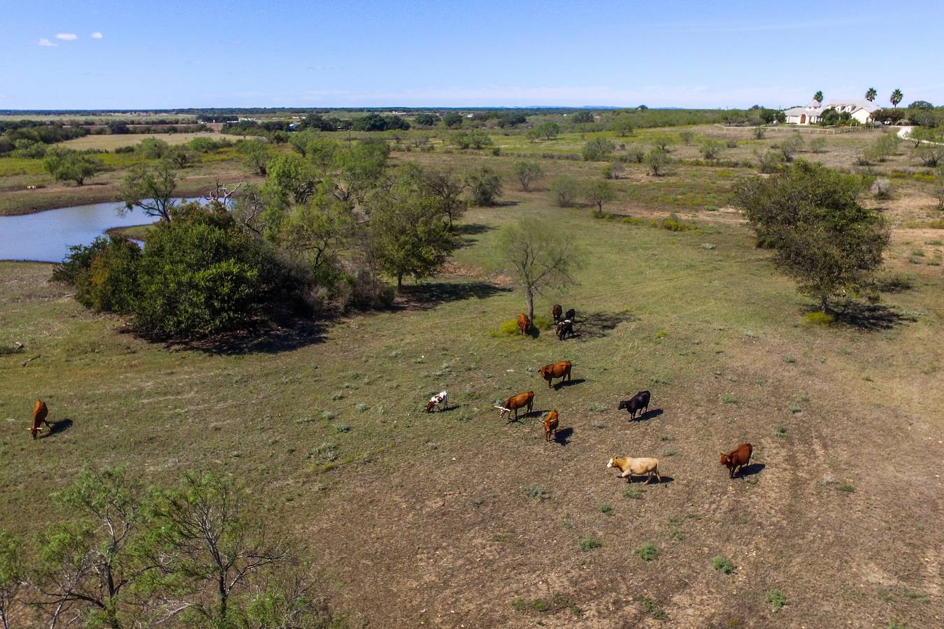 1230  Cr 445 , Hondo, TX - USA (photo 1)