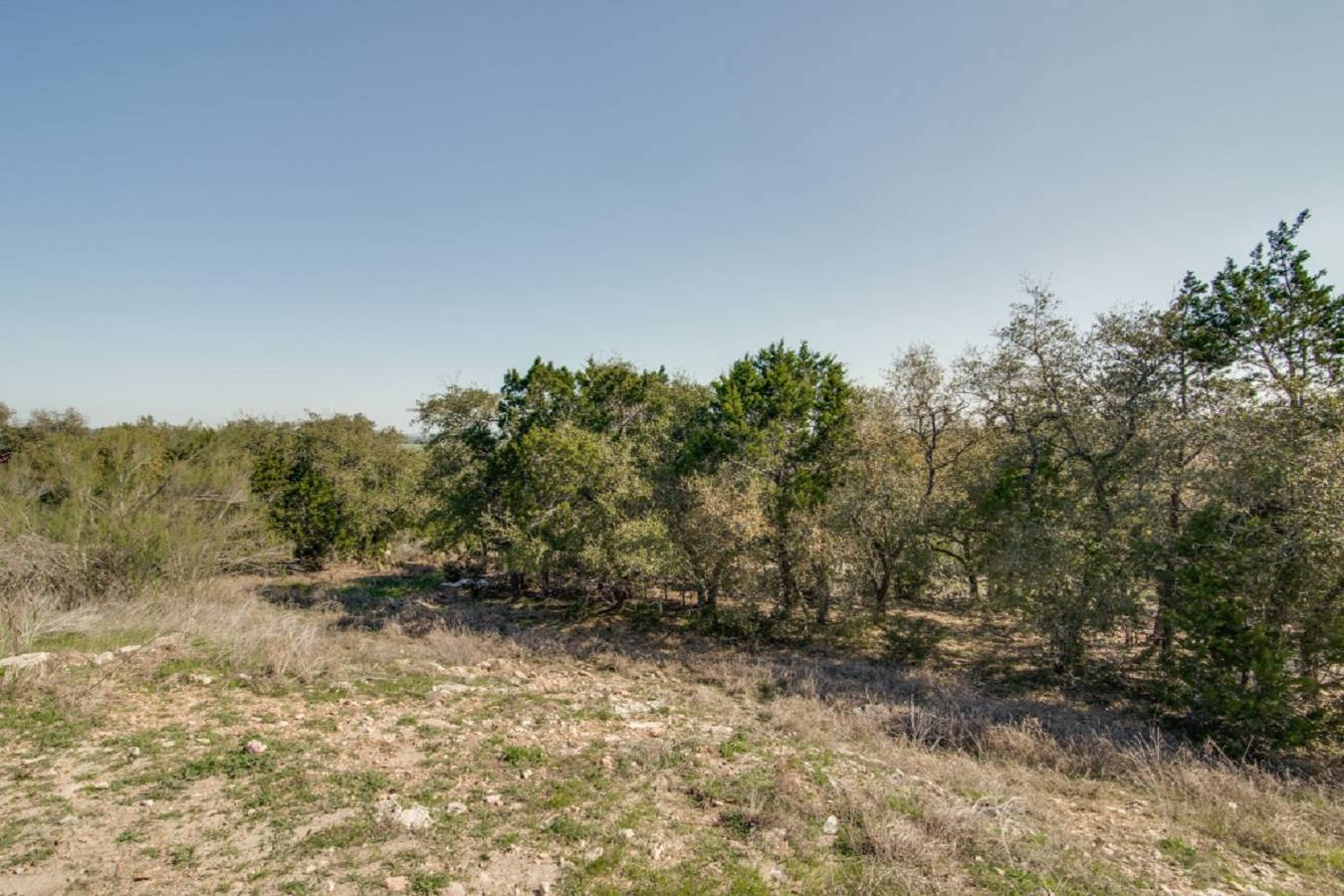 277   Fossil Hills Loop , Spring Branch, TX - USA (photo 5)