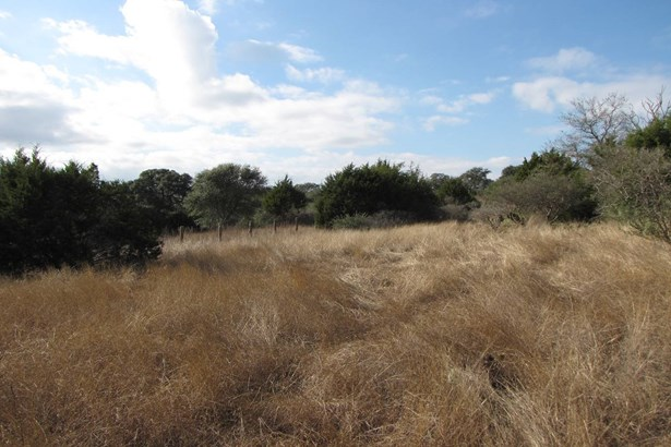 2340  Appellation Unit Lot 517, New Braunfels, TX - USA (photo 3)