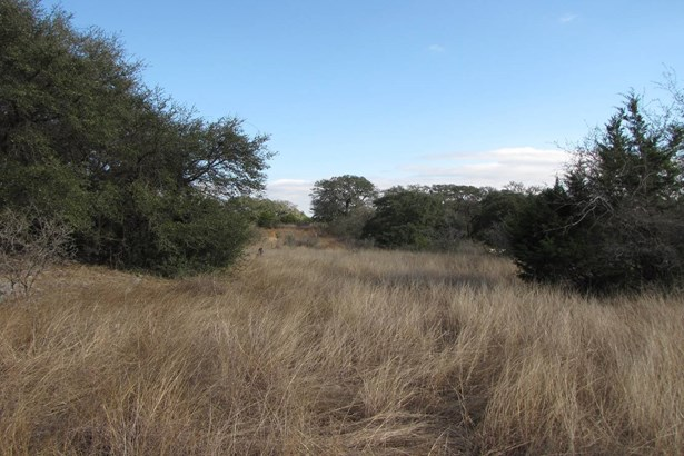 2340  Appellation Unit Lot 517, New Braunfels, TX - USA (photo 5)