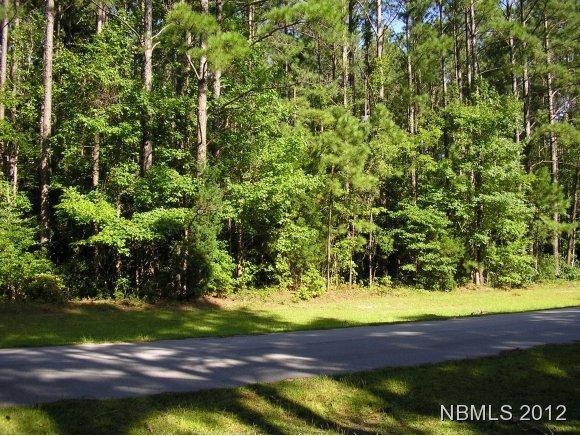 Residential Land - Havelock, NC (photo 1)