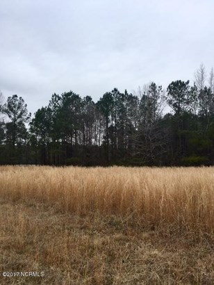 Residential Land - Currie, NC (photo 1)