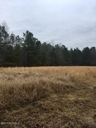 Residential Land - Currie, NC (photo 2)