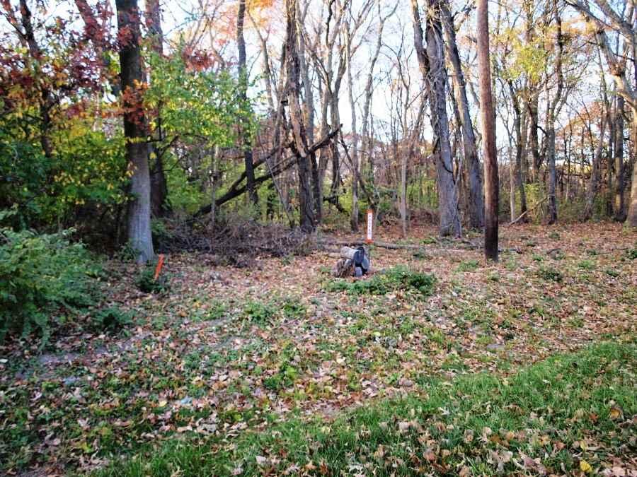 0 Merry Oaks Lane, East Moline, IL - USA (photo 2)