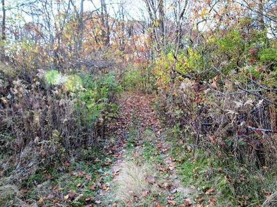 0 Merry Oaks Lane, East Moline, IL - USA (photo 3)