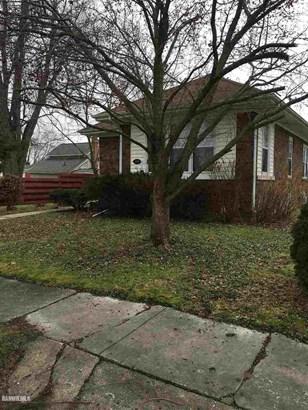310 Monroe, Hanover, IL - USA (photo 1)