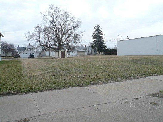 319 4th St W, Milan, IL - USA (photo 3)
