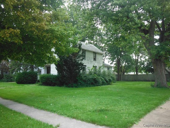 387 W 3rd Ave, Woodhull, IL - USA (photo 3)