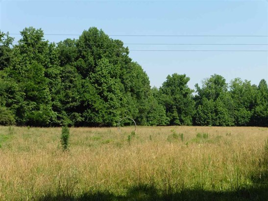 Land - Unincorporated, TN (photo 2)