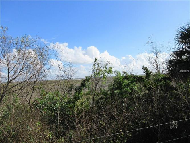 Hacienda Cir, Kissimmee, FL - USA (photo 4)