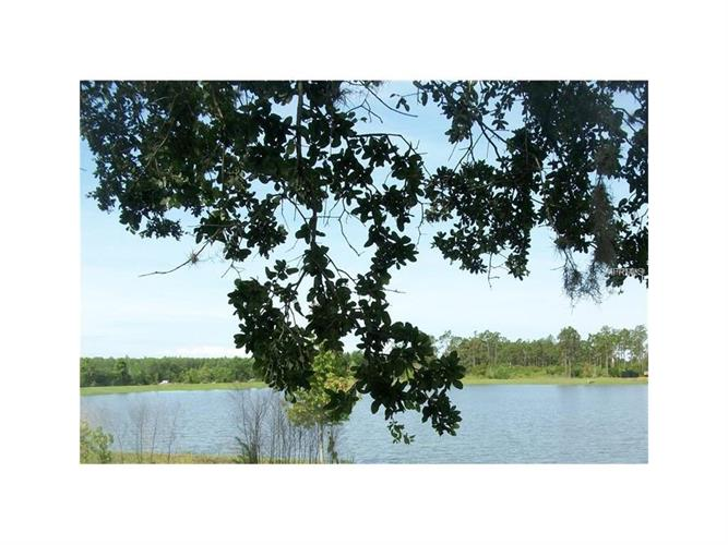 5010 Brightmour Cir, Orlando, FL - USA (photo 4)