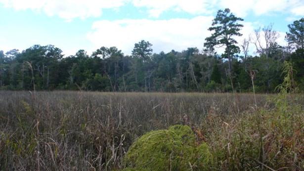 0 Irene Early Ln, Magnolia Springs, AL - USA (photo 2)