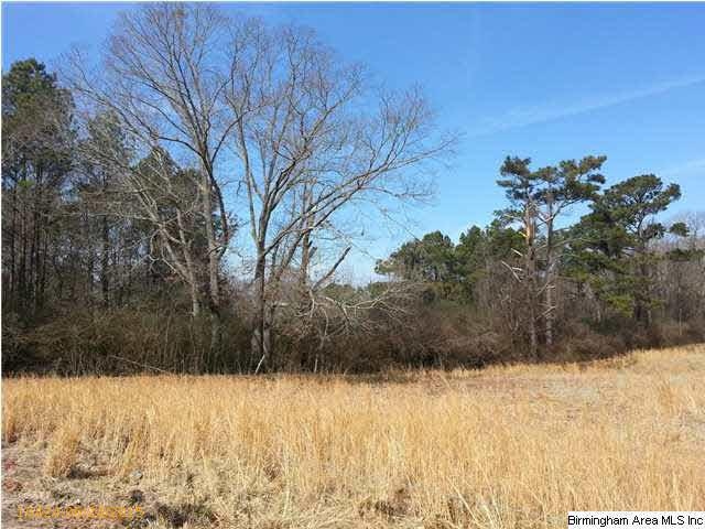 Acreage - CROPWELL, AL (photo 1)