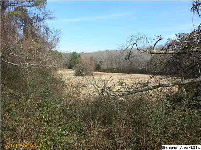 Acreage - CROPWELL, AL (photo 2)