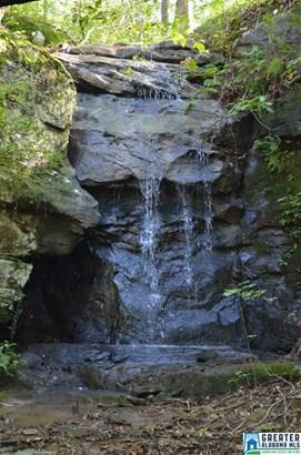 Acreage - ARLEY, AL (photo 4)