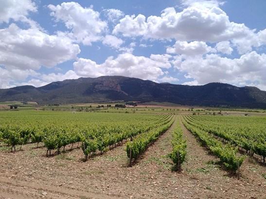 Murcia - ESP (photo 1)