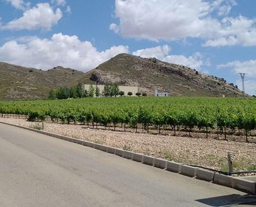 Murcia - ESP (photo 3)