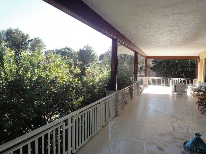 Santa Barbara, Rocafort - ESP (photo 3)