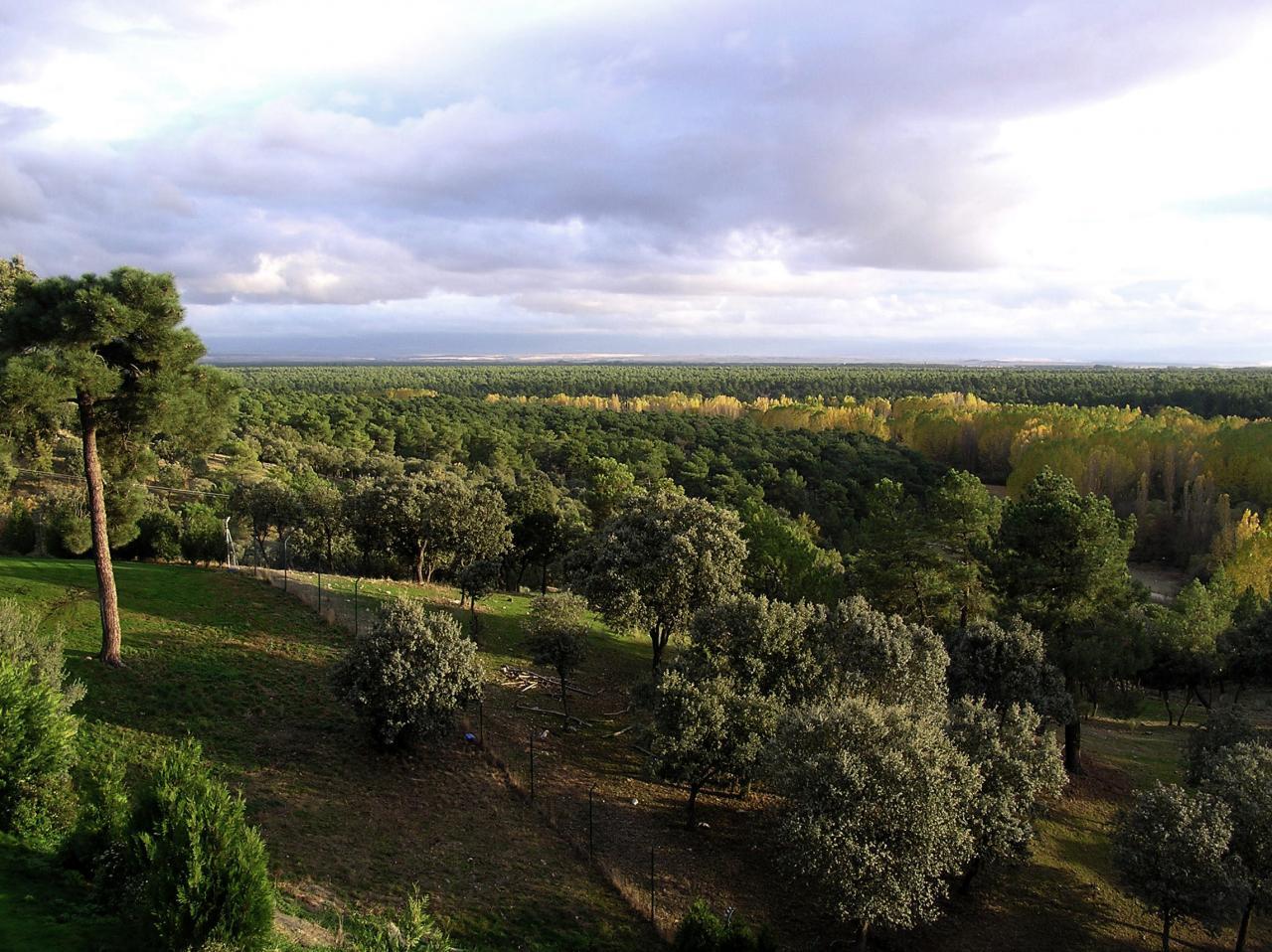 Segovia - ESP (photo 4)