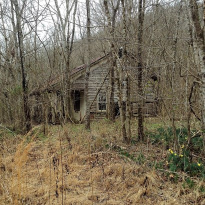1809 Norton Branch Rd, Beechgrove, TN - USA (photo 4)