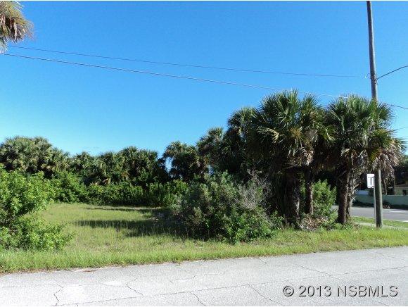 Land - New Smyrna Beach, FL (photo 3)
