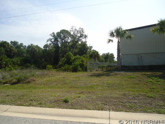 Land - Edgewater, FL (photo 3)