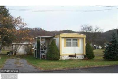 224 Chipley Ln, Moorefield, WV - USA (photo 2)
