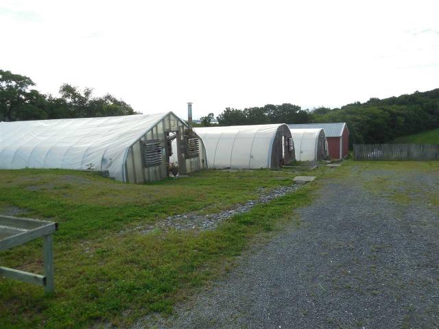 8089 Greenhouse Rd, Weyers Cave, VA - USA (photo 2)
