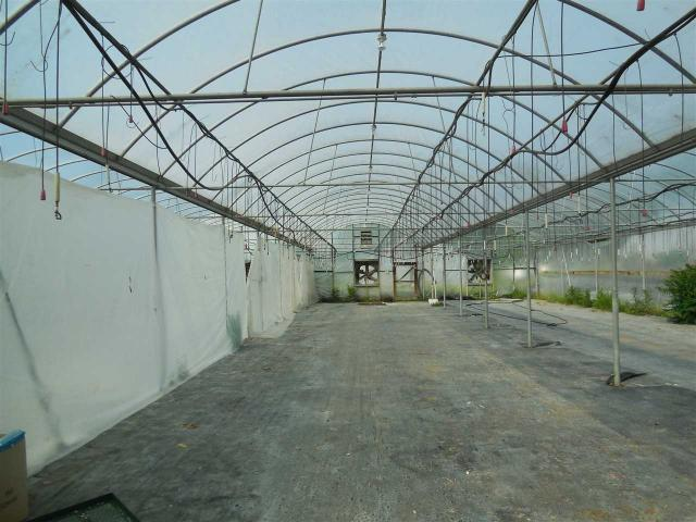 8089 Greenhouse Rd, Weyers Cave, VA - USA (photo 5)