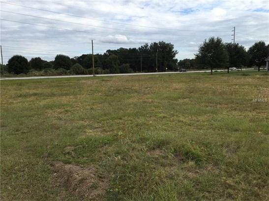 Residential Development - PLANT CITY, FL (photo 3)