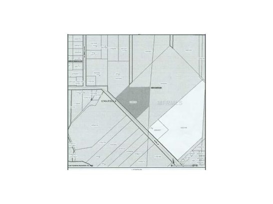 Residential Development - UMATILLA, FL (photo 3)