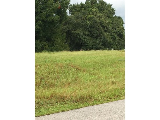 Residential Development - LADY LAKE, FL (photo 5)