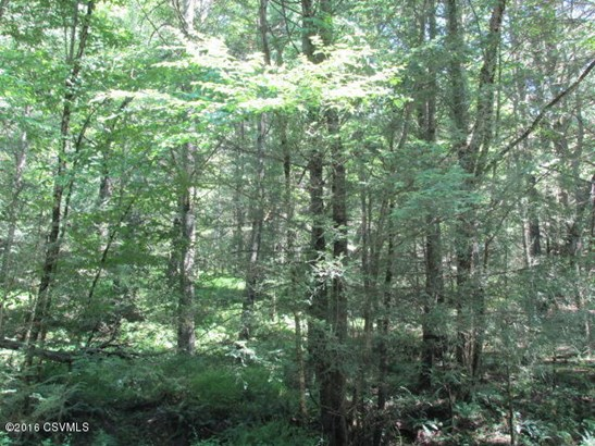 100 +/- wooded acres100 (photo 3)