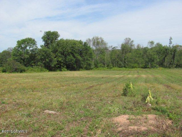 Lot #1c Bear Gap ******** Rd, Elysburg, PA - USA (photo 1)