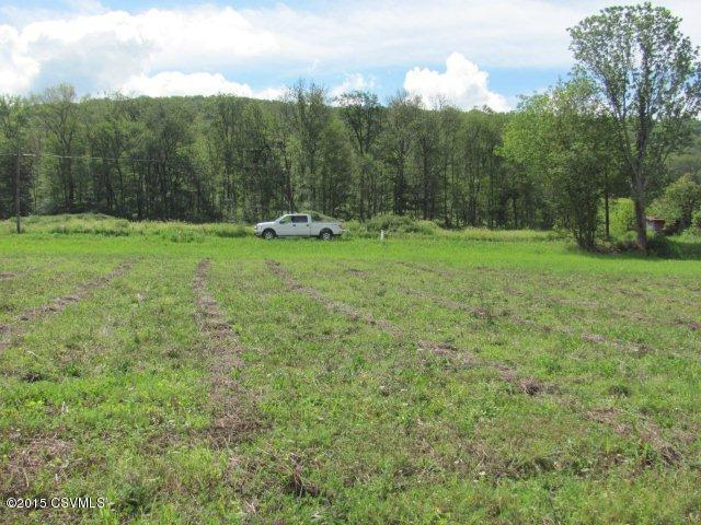 Lot #1c Bear Gap ******** Rd, Elysburg, PA - USA (photo 2)