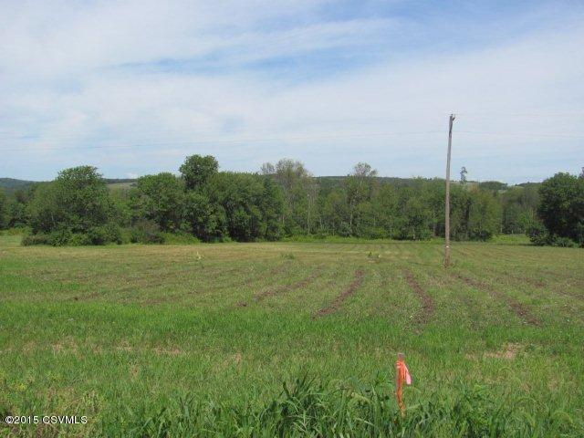 Lot #1c Bear Gap ******** Rd, Elysburg, PA - USA (photo 3)