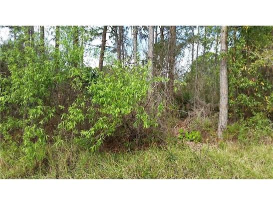 Timber, All Property - Palm Bay, FL (photo 2)