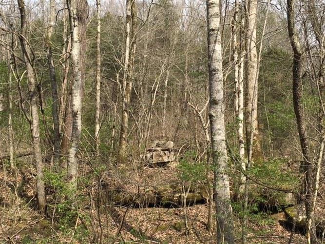 0 Fulks Hollow Rd, Lynchburg, TN - USA (photo 5)