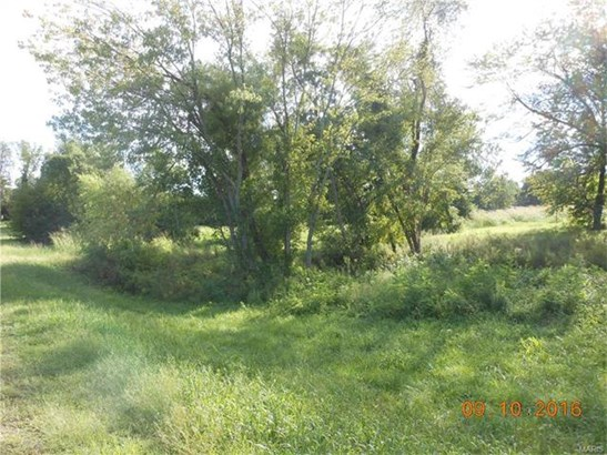 Other,Residential Lots - Alton, IL (photo 2)