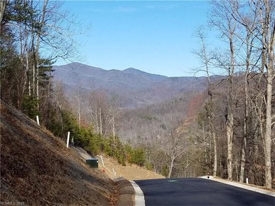 19  Old Greybeard Loop, Black Mountain, NC - USA (photo 1)