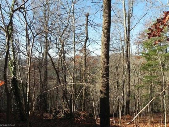 19  Old Greybeard Loop, Black Mountain, NC - USA (photo 3)