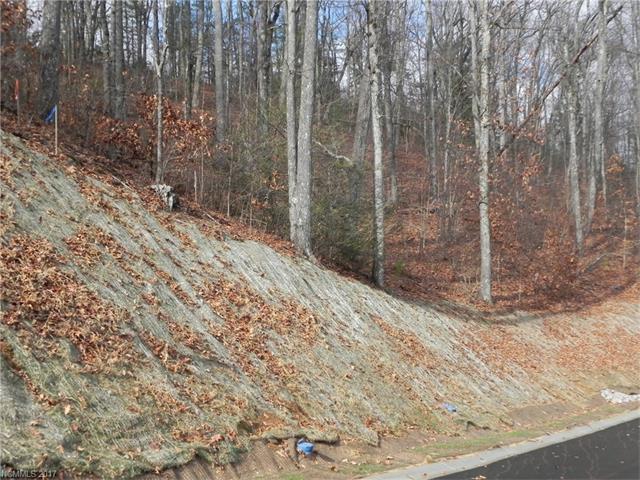 19  Old Greybeard Loop, Black Mountain, NC - USA (photo 4)