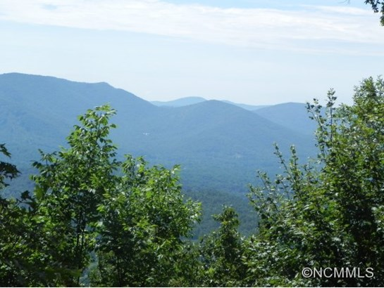 1300  Elk Mountain Scenic Highway, Asheville, NC - USA (photo 2)