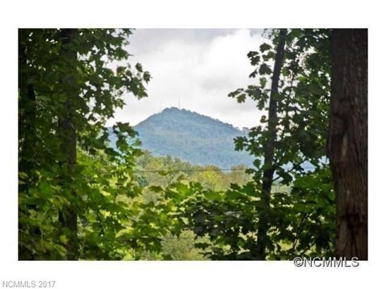 89  Pine Tree Drive, Biltmore Lake, NC - USA (photo 1)