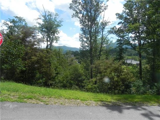 11  Magnolia View Trail, Asheville, NC - USA (photo 1)